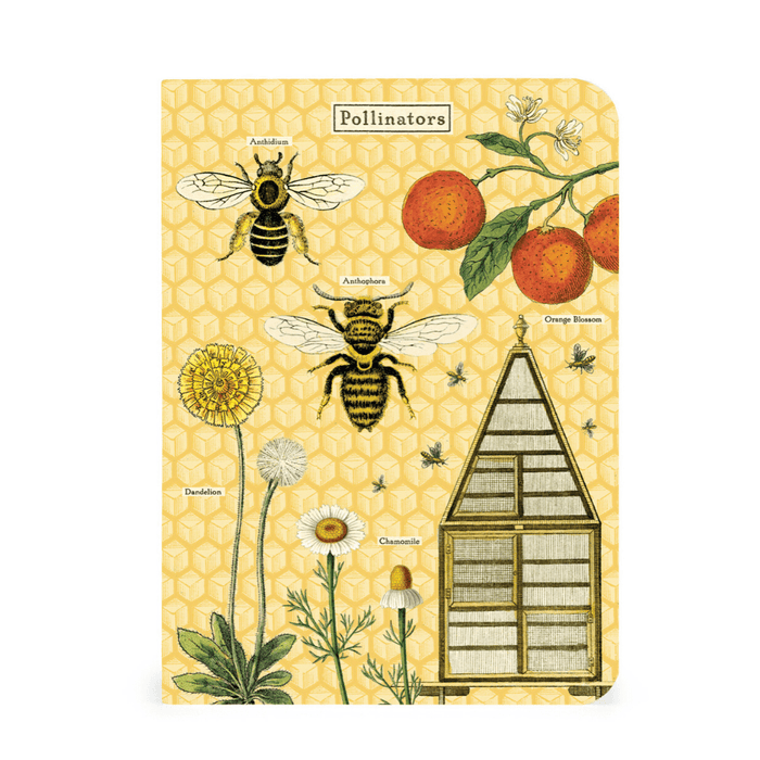 Bees and Honey Mini Notebook Set - Cavallini Papers & Co. Inc - The Shops at Mount Vernon