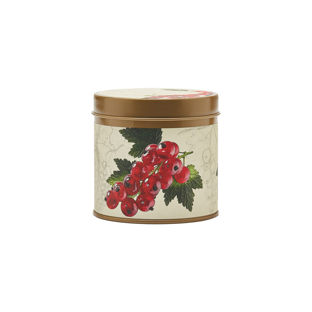 Red Currant and Cranberry Signature Tin - Rosy Rings - The Shops at Mount Vernon