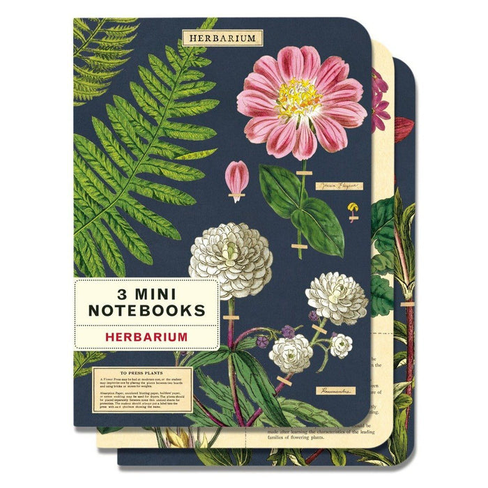 Herbarium Mini Notebook Set - Cavallini Papers & Co. Inc - The Shops at Mount Vernon