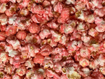 Baby Girl Pink Sweet Popcorn for Baby Showers Gender Reveal Parties
