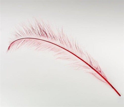 F304 Burnt Ostrich Feather - 27 - 28 inch