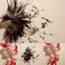 F2040 HACKLE AND COQUE FEATHER
