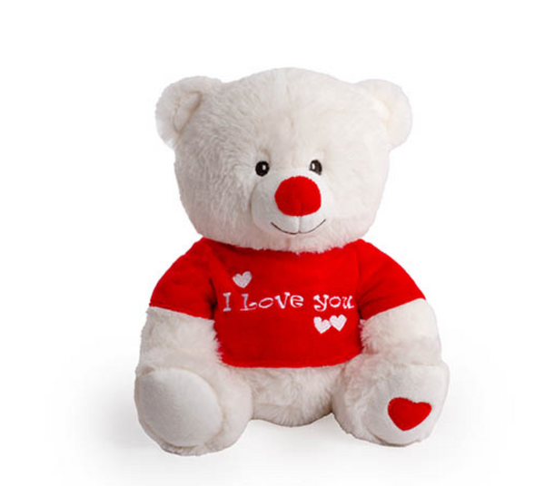 Teddy Bear with Tshirt- 21cm