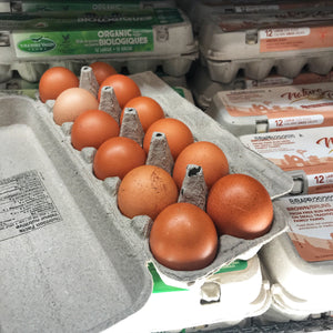 Eggs - Large Brown