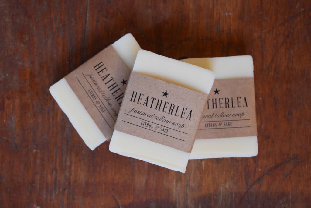 Citrus & Sage: Pastured Tallow Soap (3 pc)