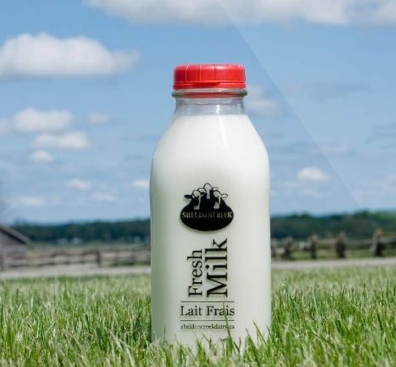 White Whole Milk - Sheldon Creek Dairy