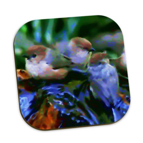 COASTERS (SET OF 4) 01 - IN THE GARDEN / WILD BIRDS UNLIMITED
