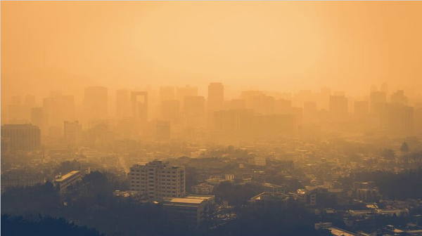 Air Pollution and Disease