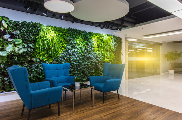 What Can a Green Wall Do for You?