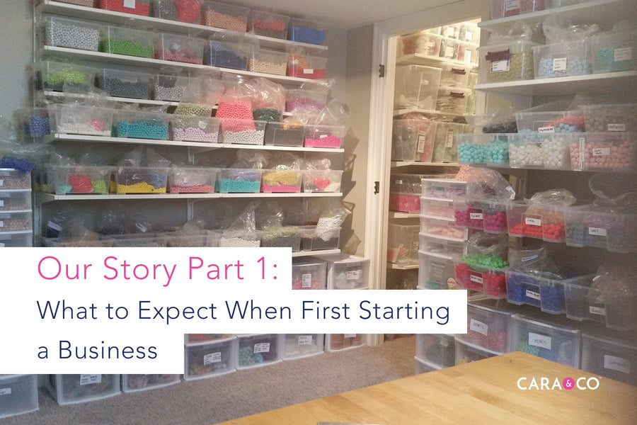 What to Expect When First Starting a Business: Our Story, Part 1