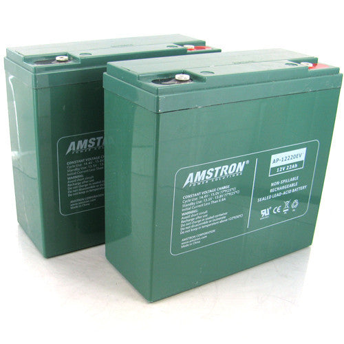 Amstron AP-12220EV w/ R Terminal AGM Battery (2 Pack)