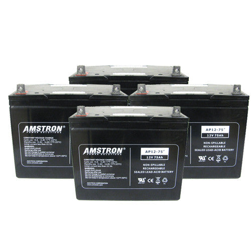 APC RBC14 Replacement Battery by Amstron (2 Year Warranty)