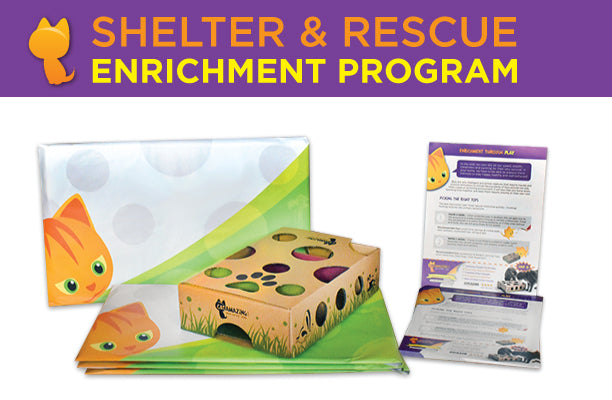 Cat Amazing Shelter & Rescue Enrichment Program is Launched!