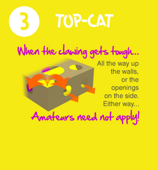 Cat Amazing Puzzle Toy for Cats Beginner Level Diagram