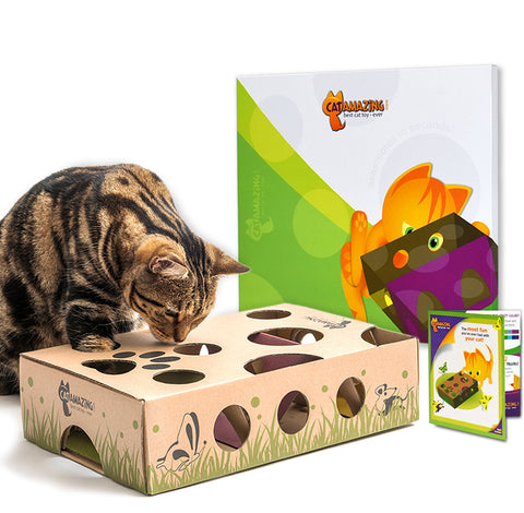 Cat Amazing interactive cat feeder - cat toy gift for Mother's day!