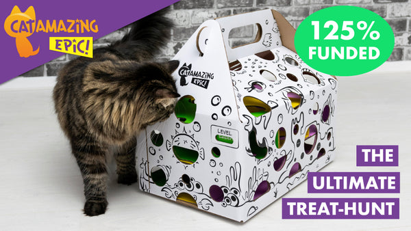 Cat Amazing EPIC! cat toy puzzle feeder funded on kickstarter