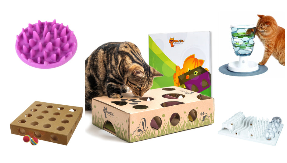 Comparison of Cat Puzzle Feeders & Toys