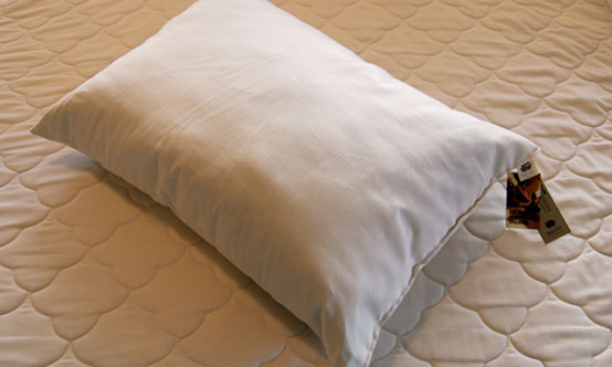 Sachi Organics All Cotton Pillow - Natural Linens