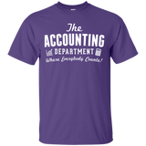 Accountant Everybody Counts