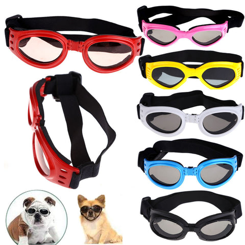 Sunsafe™ Fashion Eyewear & UV Protection For Dogs