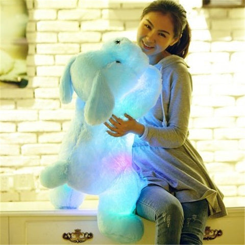 Light Up Plush Dog - in blue, pink and white
