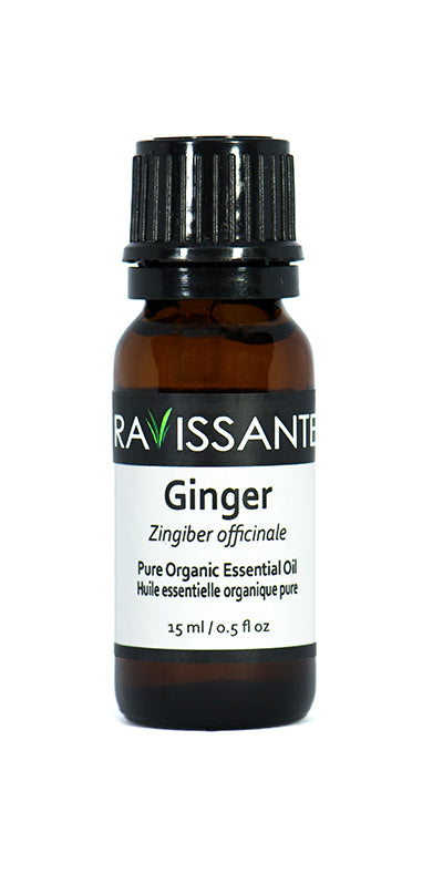 Ginger Organic Essential Oil – 15 ml