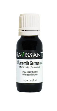 Chamomile German (Blue) Essential Oil - 2 sizes avail (5 ml and 15 ml)