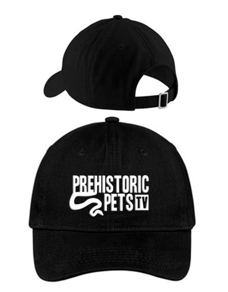 Prehistoric Pets TV Dad Hat BLACK