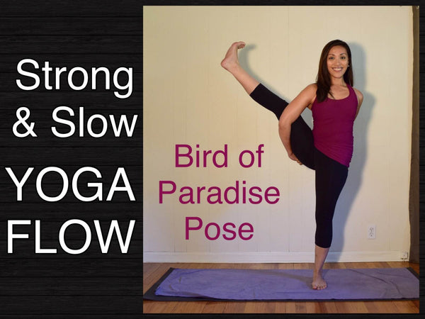 75 Minute Intermediate Vinyasa Flow Yoga - Bird of Paradise