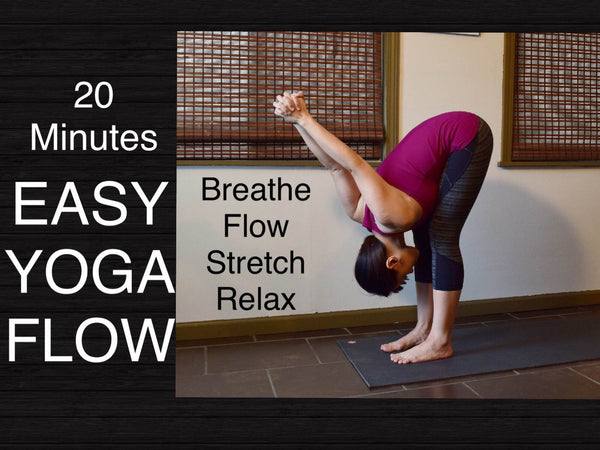 Quick and Easy Practice for Busy Days - 20 Minute Yoga Flow