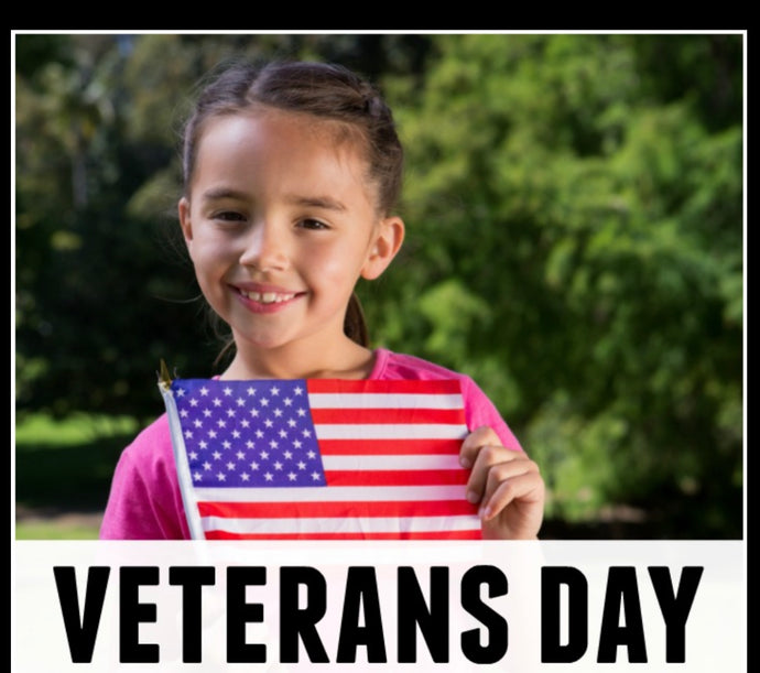 10 Ways to Teach Your Children About Veterans Day