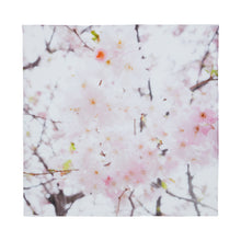 Load image into Gallery viewer, A.T London White Cherry Blossoms Ninja Scarf