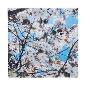 A.T London Blue Cherry Blossom Ninja Scarf