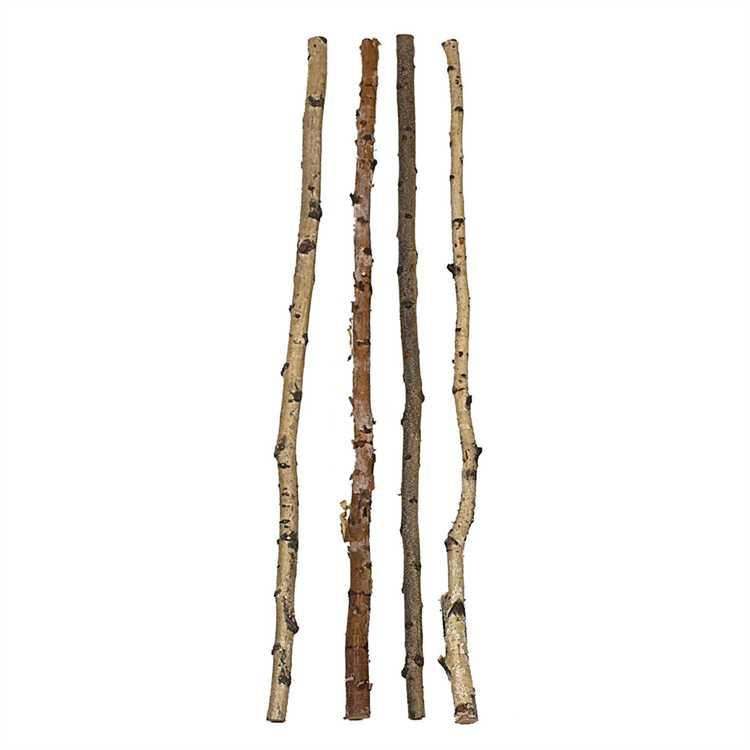 Birch Branch - City Home - Portland Oregon - Furniture and Home Decor