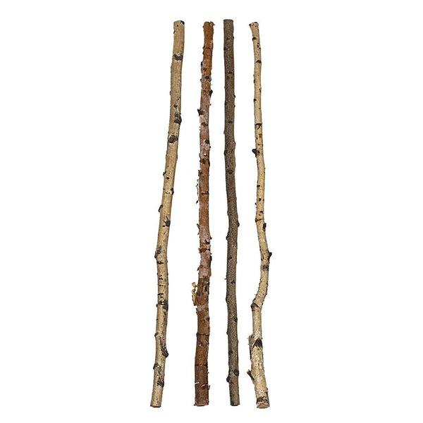 Decorative Birch Branch