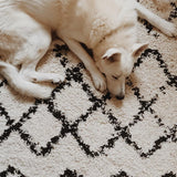 Ivory & Dark Brown Scout Rug - City Home - Portland Oregon - Furniture and Home Decor