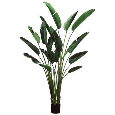 Bird of Paradise Faux Plant - City Home - Portland Oregon - Furniture and Home Decor