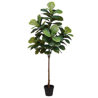 6' Faux Fiddle Leaf Fig Tree - City Home - Portland Oregon - Furniture and Home Decor