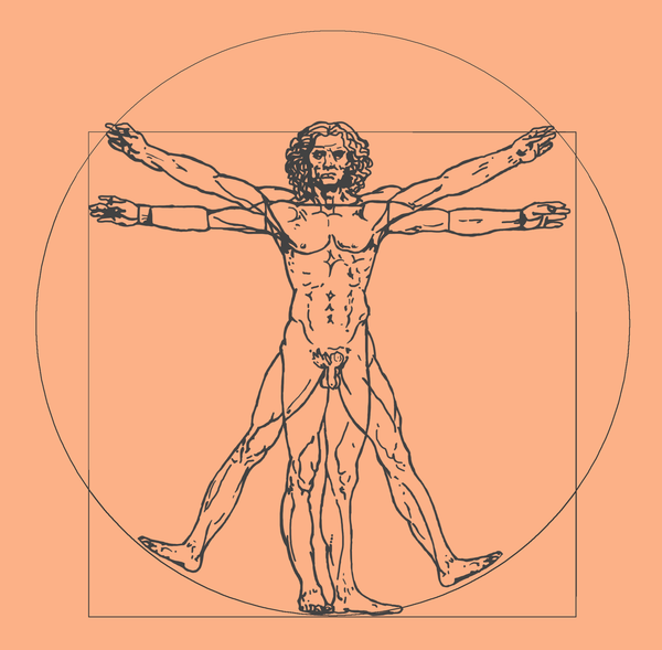 The Vitruvian Man - Uffizi ART