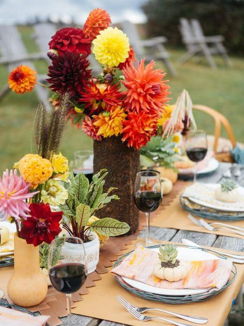 Fabulous Tips to Throw the Best Fall Picnic Party