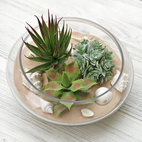 Succulents as a Perfect Tool for Your Last-Minute Arrangements