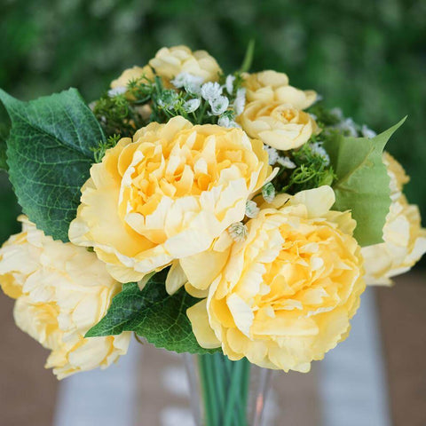 yellow multi-sized peony flowers