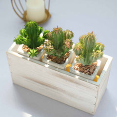 Small Wooden Planters