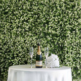 11 Sq ft. | 4 Panels Artificial Boxwood Hedge Faux Genlisea with White Tips Foliage Green Garden Wall Mat
