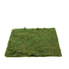 "18"" x 16"" Preserved Natural Moss Roll"