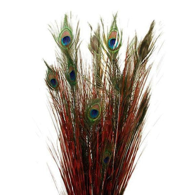18 Real Peacock Feathers With Artificial Grass Wedding Home Bouquet Centerpiece Decor - Red