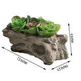 "7"" Long - Succulent Planter with 5 Artificial Succulents - Hen and Chicks Artificial Plants"