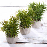 "Set of 3 | Assorted Fake Succulents in Pot | 8"" Assorted Spiky Crassula Artificial Plants with Pots"