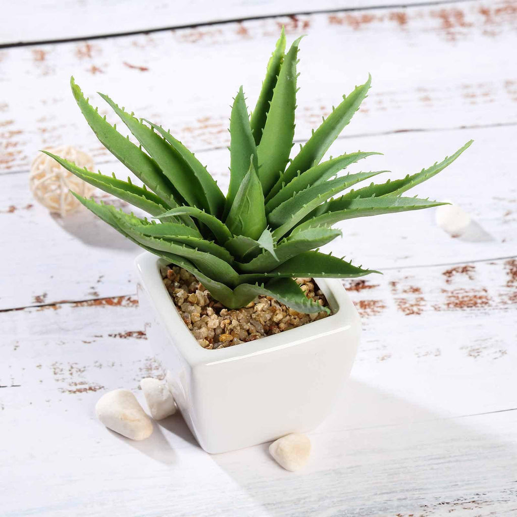 Set Of 3 Assorted Fake Succulents In Pot 5 Assorted Spotted Aloe Vera Artificial Plants With Pots Tableclothsfactory