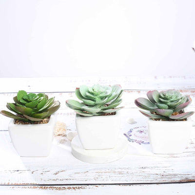 "Set of 3 | Assorted Fake Succulents in Pot | 4"" Assorted Echeveria Artificial Plants with Pots"